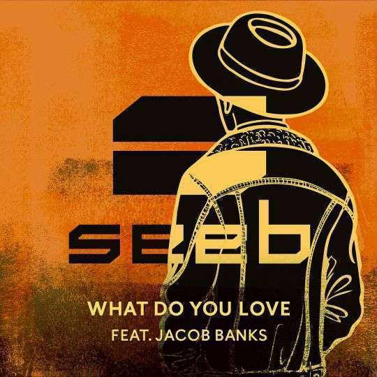 Coverafbeelding Seeb feat. Jacob Banks - What do you love