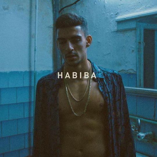 Coverafbeelding Habiba - Boef