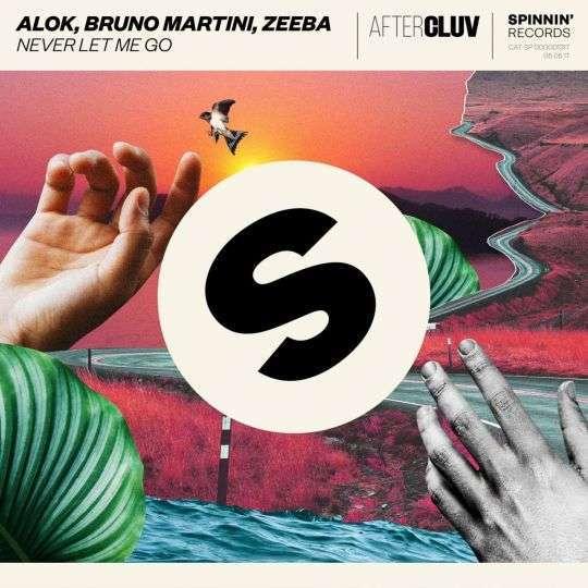 Coverafbeelding Never Let Me Go - Alok, Bruno Martini, Zeeba