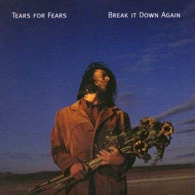 Coverafbeelding Break It Down Again - Tears For Fears