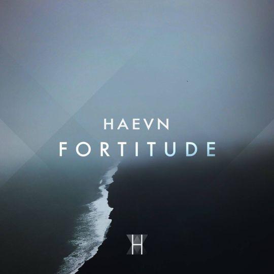 Coverafbeelding Fortitude - Haevn