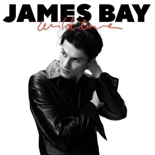 Coverafbeelding Wild Love - James Bay