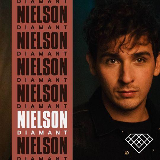 Coverafbeelding Diamant - Nielson