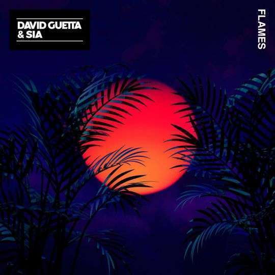 Coverafbeelding Flames - David Guetta & Sia