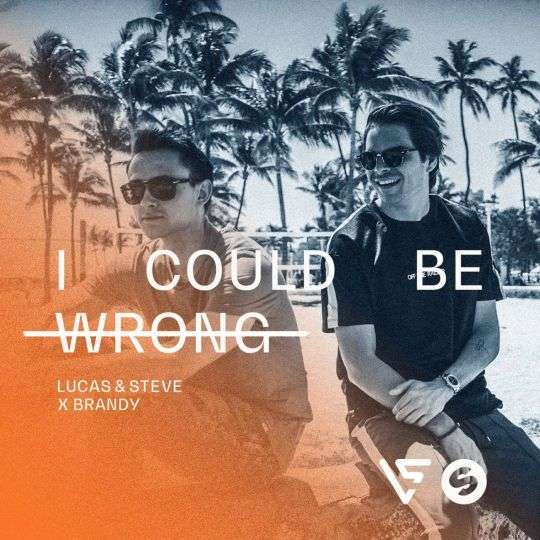 Coverafbeelding Lucas & Steve x Brandy - I could be wrong