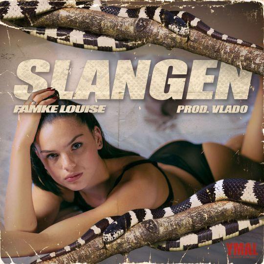 Coverafbeelding Slangen - Famke Louise