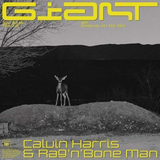 Coverafbeelding Calvin Harris & Rag'n'Bone Man - Giant