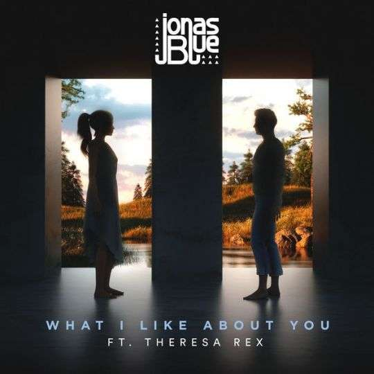 Coverafbeelding What I Like About You - Jonas Blue Ft. Theresa Rex