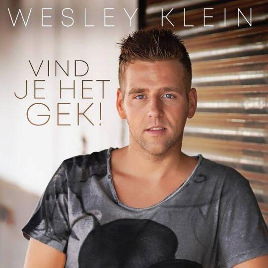 Coverafbeelding Wesley Klein - Vind Je Het Gek!