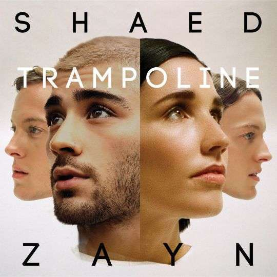 Coverafbeelding Trampoline - Shaed & Zayn