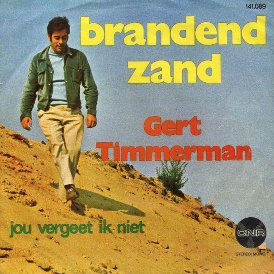 Coverafbeelding Brandend Zand - Gert Timmerman