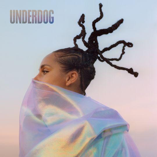 Coverafbeelding Underdog - Alicia Keys