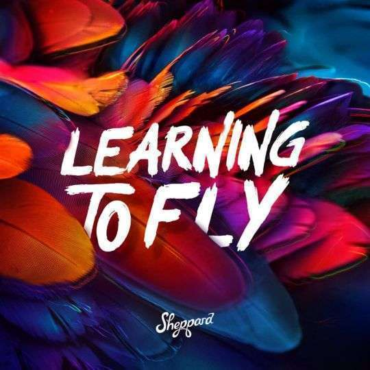 Coverafbeelding Learning To Fly - Sheppard
