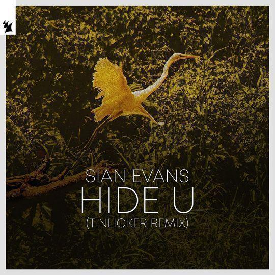 Coverafbeelding Sian Evans - Hide U (Tinlicker Remix)