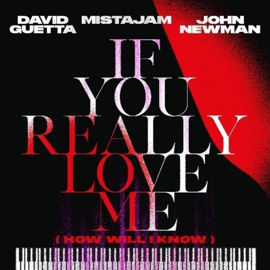 Coverafbeelding If You Really Love Me (How Will I Know) - David Guetta X Mistajam X John Newman
