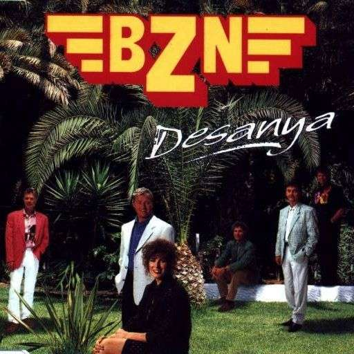 Coverafbeelding Desanya - Bzn