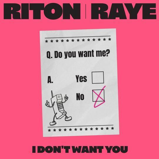 Coverafbeelding I Don't Want You - Riton X Raye