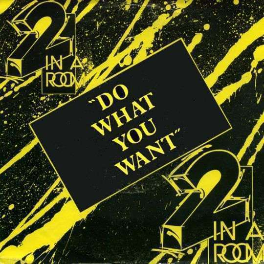 Coverafbeelding Do What You Want - 2 In A Room
