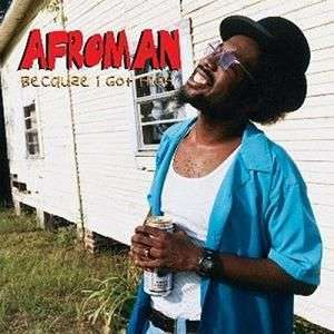 Coverafbeelding Afroman - Because I Got High