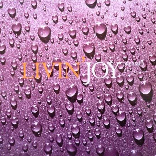 Coverafbeelding Dreamer - Livin' Joy