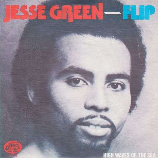 Coverafbeelding Flip - Jesse Green