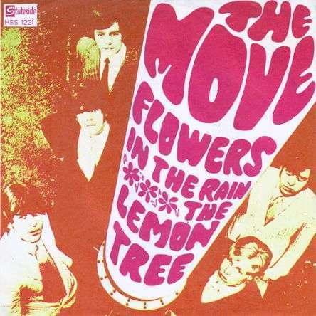 Coverafbeelding The Move - Flowers In The Rain