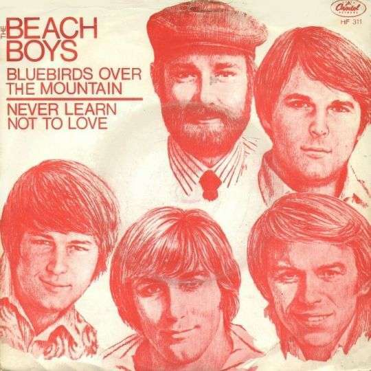 Coverafbeelding Bluebirds Over The Mountain - The Beach Boys