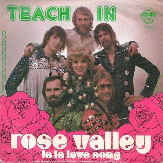 Coverafbeelding Rose Valley - Teach In