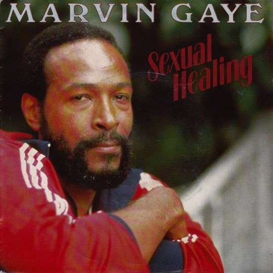 Coverafbeelding Sexual Healing - Marvin Gaye