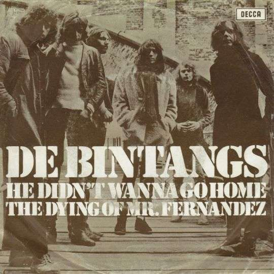 Coverafbeelding He Didn't Wanna Go Home - De Bintangs