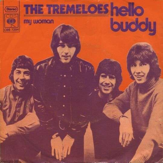 Coverafbeelding Hello Buddy - The Tremeloes