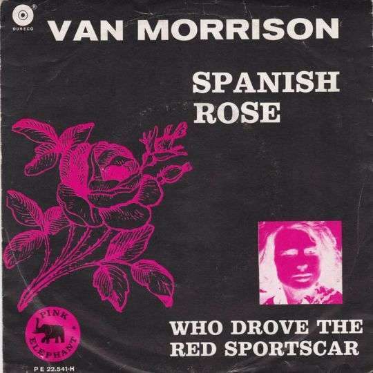 Coverafbeelding Van Morrison - Spanish Rose