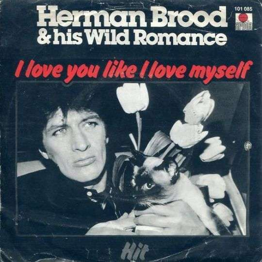 Coverafbeelding I Love You Like I Love Myself - Herman Brood & His Wild Romance