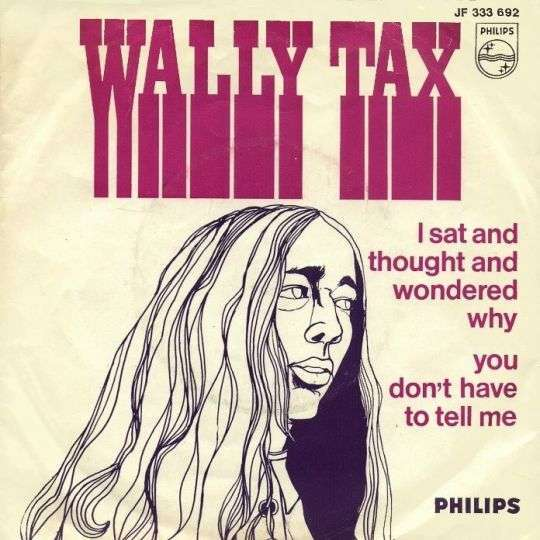Coverafbeelding I Sat And Thought And Wondered Why - Wally Tax