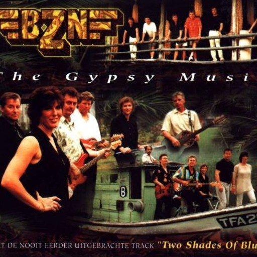 Coverafbeelding BZN - The Gypsy Music