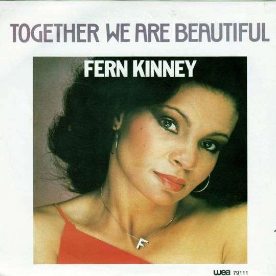 Coverafbeelding Fern Kinney - Together We Are Beautiful