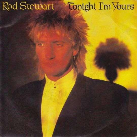Coverafbeelding Tonight I'm Yours - Rod Stewart