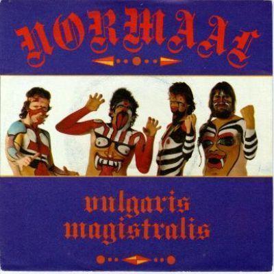 Coverafbeelding Vulgaris Magistralis - Normaal