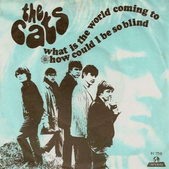 Coverafbeelding What Is The World Coming To - The Cats