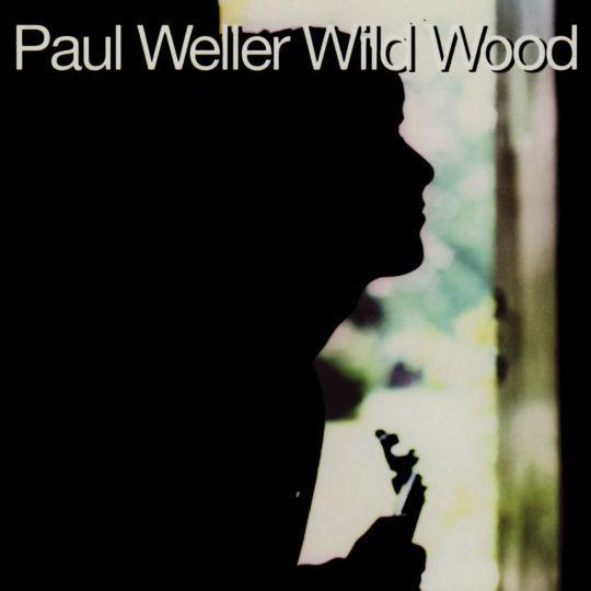 Coverafbeelding Wild Wood - Paul Weller