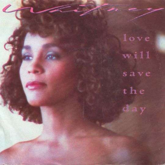 Coverafbeelding Whitney - Love Will Save The Day