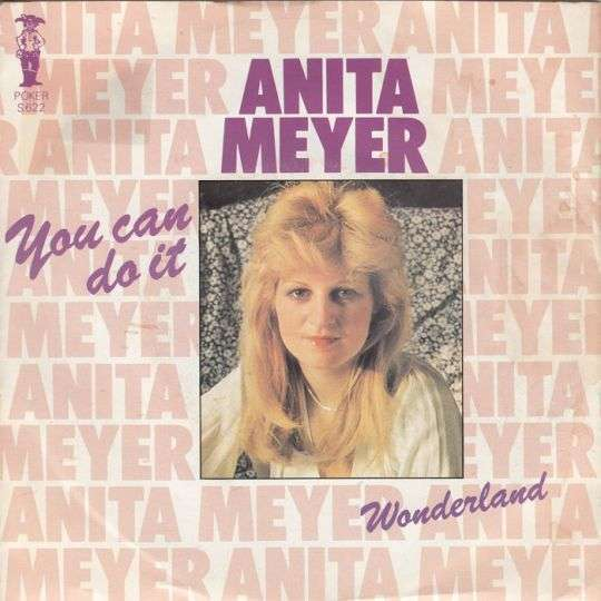 Coverafbeelding You Can Do It - Anita Meyer