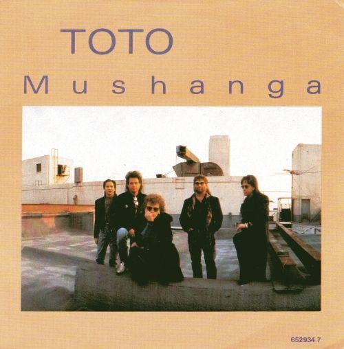 Coverafbeelding Mushanga - Toto