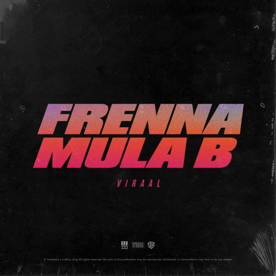 Coverafbeelding Viraal - Frenna & Mula B