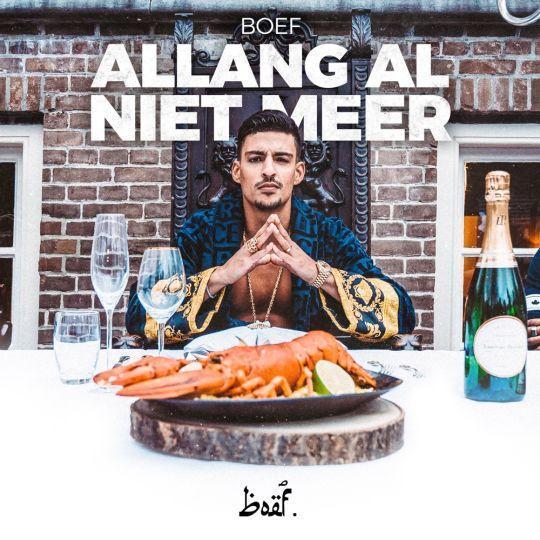 Coverafbeelding Allang Al Niet Meer - Boef