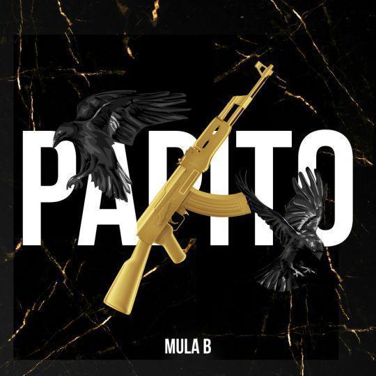 Coverafbeelding Papito - Mula B