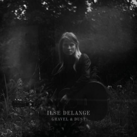 Coverafbeelding Gravel & Dust - Ilse Delange