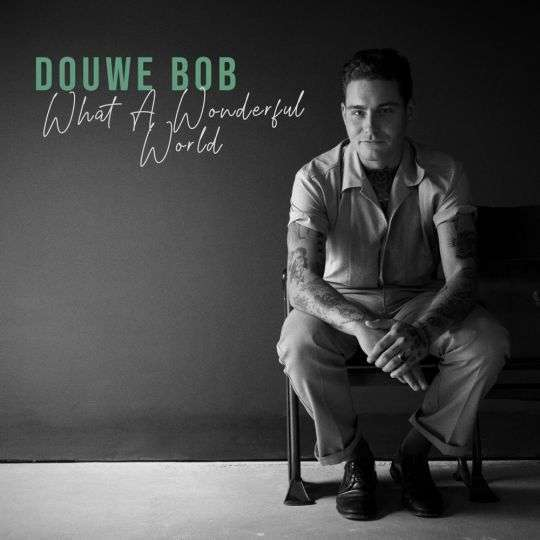 Coverafbeelding What A Wonderful World - Douwe Bob
