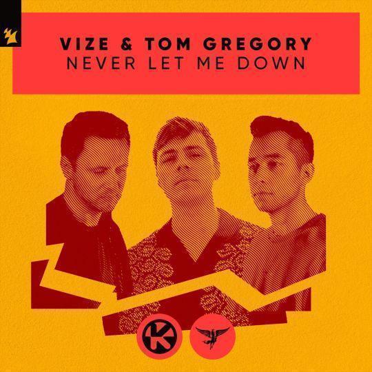 Coverafbeelding Vize & Tom Gregory - Never let me down