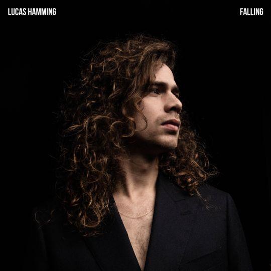 Coverafbeelding Lucas Hamming - Falling